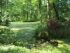 Jezírko v anglickém parku