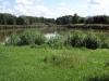 Malý Zákupský rybník