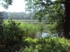 Panin rybník nad Mariánskou výšinou